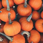 Get in the Fall Spirit at Spider Hill Farm